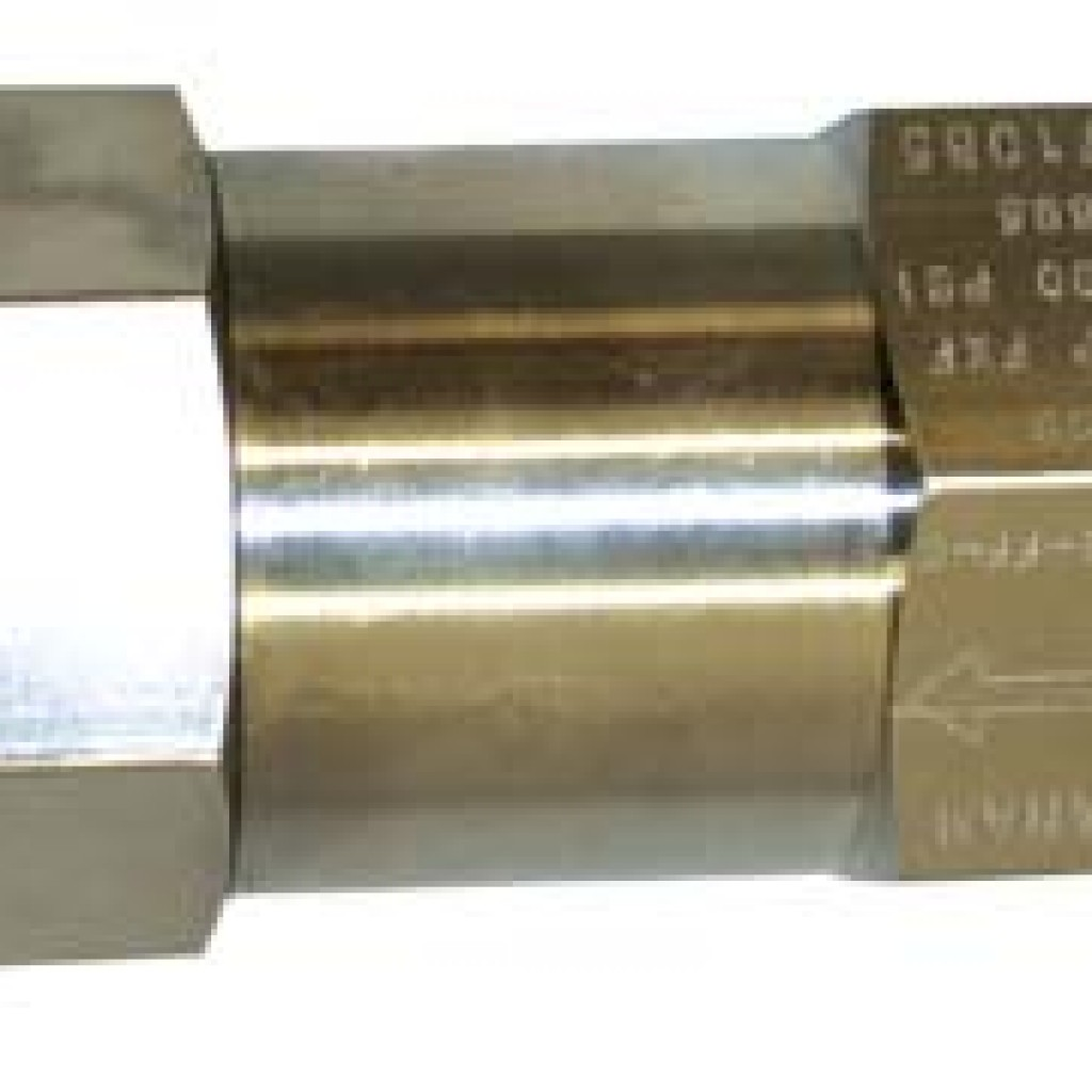 316 Stainless Steel Check Valve - BSPP